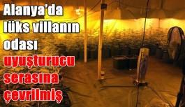 Alanya'da lüks villanın odası uyuşturucu serasına çevrilmiş