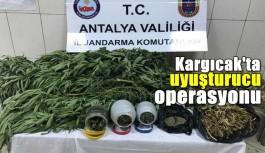 Kargıcak'ta uyuşturucu operasyonu 1 Gözaltı!