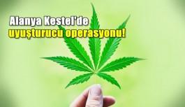 Kestel'de uyuşturucu operasyonu