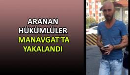 Aranan hükümlüler Manavgat'ta yakalandı