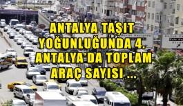 Antalya'da toplam araç sayısı ...