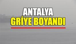 Antalya griye boyandı