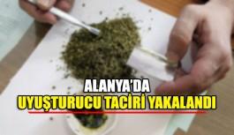 Alanya'da uyuşturucu taciri yakalandı