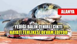 Yediği balıktan zehirlendi, hayatı tehlikesi...