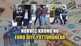 Norveç Kronu'nu 'Euro' diye yutturdular