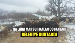 Yaylada mahsur kalan çobanları  belediye kurtardı