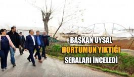 Başkan Uysal, hortumun yıktığı seraları inceledi