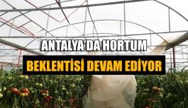 Antalya'da hortum beklentisi devam ediyor