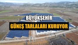 Büyükşehir güneş tarlaları kuruyor