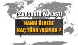 Çavuşoğlu paylaştı: Hangi ülkede kaç türk yaşıyor ?