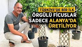 Maki Peyzaj'ın büyük başarısı! Türkiye'de bir ilk...