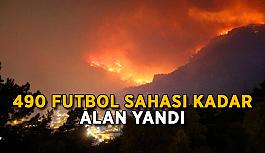 490 futbol sahası kadar alan yandı
