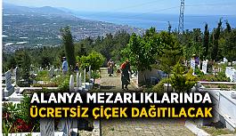 Alanya mezarlıklarında ücretsiz çiçek dağıtılacak