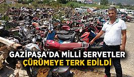 Gazipaşa'da milli servetler çürümeye terk edildi