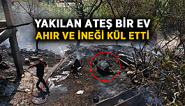 Yakılan ateş bir ev, ahır ve ineği kül etti