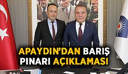 Apaydın'dan Barış Pınarı açıklaması