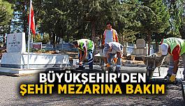 Büyükşehir'den şehit mezarına bakım