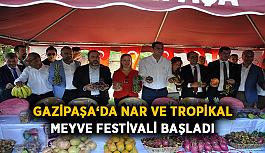 Gazipaşa'da Nar ve Tropikal Meyve Festivali başladı