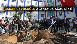 Bakan Çavuşoğlu Alanya'da ağaç dikti