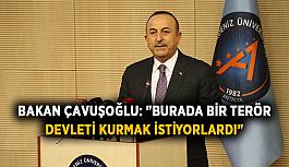 """Bakan Çavuşoğlu: """"Burada bir terör devleti kurmak istiyorlardı"""""""