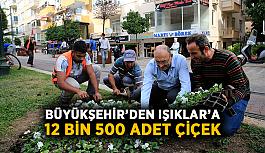 Büyükşehir'den Işıklar'a 12 bin 500 adet çiçek