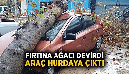 Fırtına ağacı devirdi, araç hurdaya çıktı