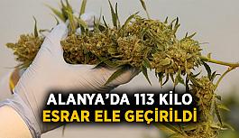 Alanya'da 113 kilo esrar ele geçirildi