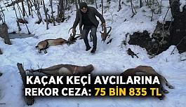 Kaçak keçi avcılarına rekor ceza: 75 bin 835 TL