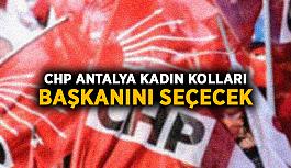 CHP Antalya Kadın Kolları başkanını seçecek
