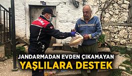 Jandarmadan evden çıkamayan yaşlılara destek
