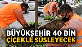 Büyükşehir 40 bin çiçekle süsleyecek