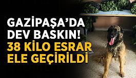 Gazipaşa'da dev baskın! 38 kilo esrar ele geçirildi
