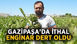 Gazipaşa'da ithal enginar dert oldu