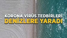 Korona virüs tedbirleri denizlere yaradı