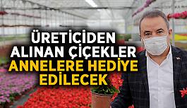 Üreticiden alınan çiçekler annelere hediye edilecek