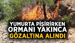 Yumurta pişirirken ormanı yakınca gözaltına alındı