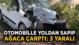 Otomobille yoldan sapıp ağaca çarptı: 3 yaralı