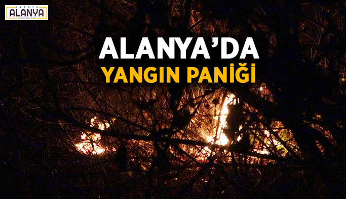 Bitmiyor! Alanya'da yangın paniği