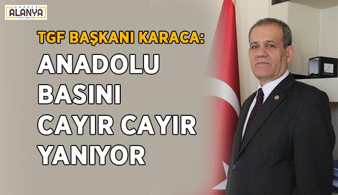 """""""Anadolu basını cayır cayır yanıyor"""""""