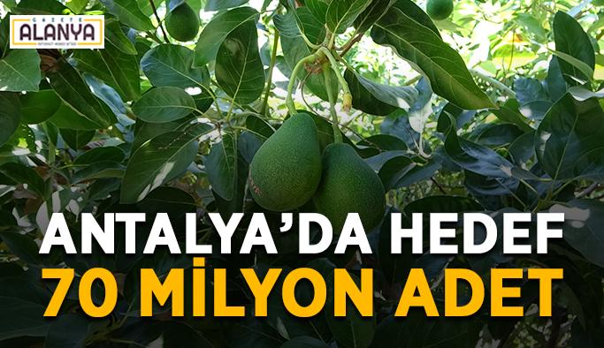 Antalya'da hedef 70 milyon adet
