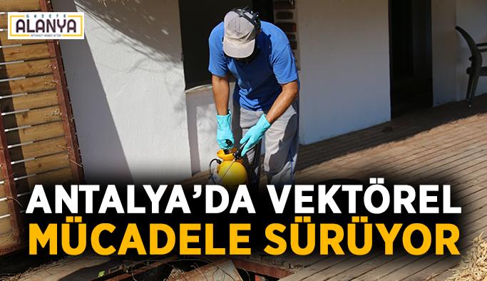 Antalya'da vektörel mücadele sürüyor