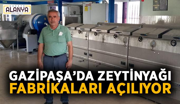 Gazipaşa'da zeytinyağı fabrikaları açılıyor