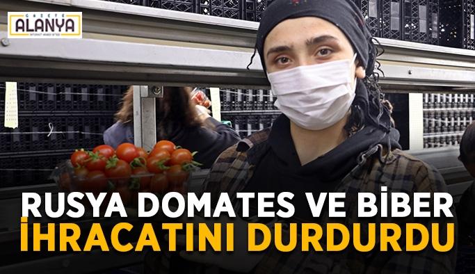Rusya domates ve biber ihracatını durdurdu