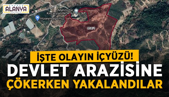 Alanya'da devlet arazisine çökerken yakalandılar