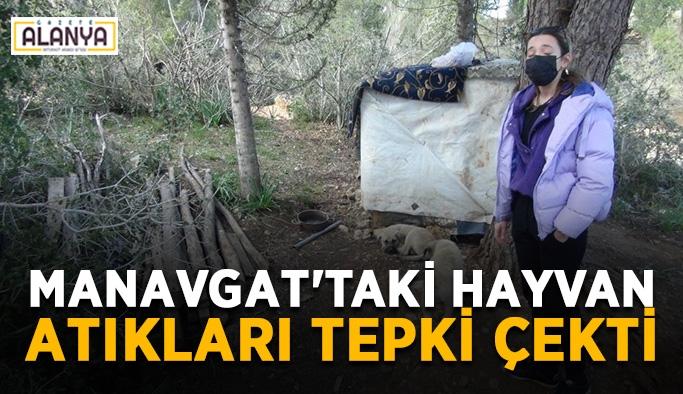 Manavgat'taki hayvan atıkları tepki çekti