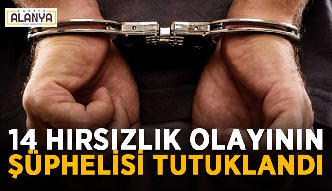 14 hırsızlık olayının şüphelisi tutuklandı