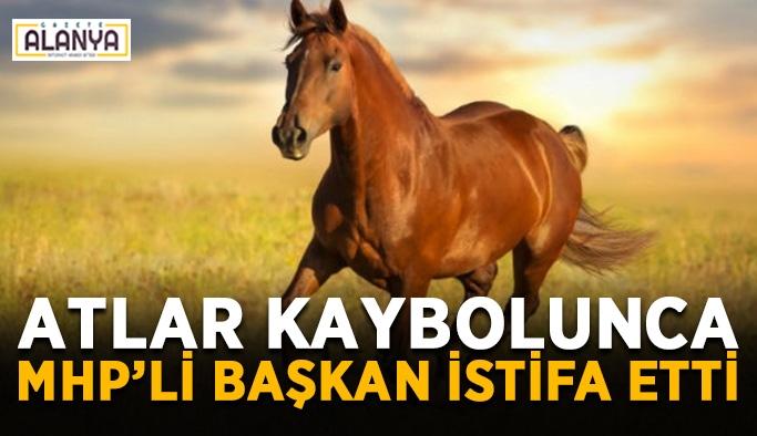 Gönderilen atlar kaybolunca MHP'li başkan istifa etti