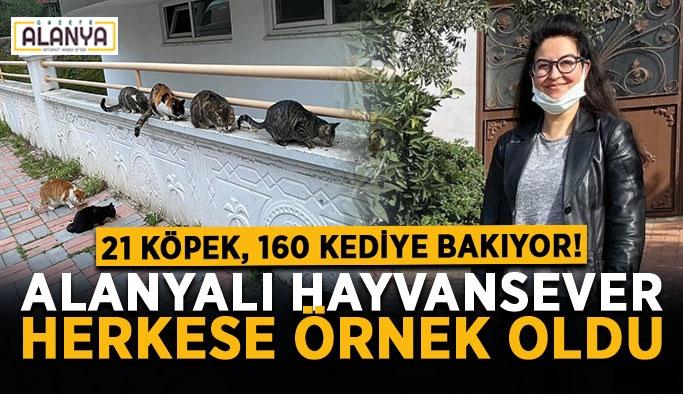 21 köpek, 160 kediye bakıyor! Alanyalı hayvansever herkese örnek oldu