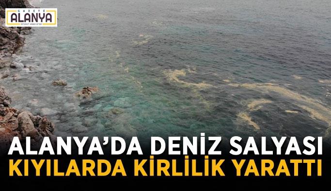 Alanya'da deniz salyası kıyılarda kirlilik yarattı