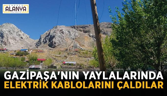 Gazipaşa'nın yaylalarında elektrik kablolarını çaldılar
